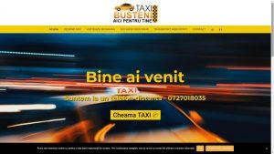 taxi-busteni